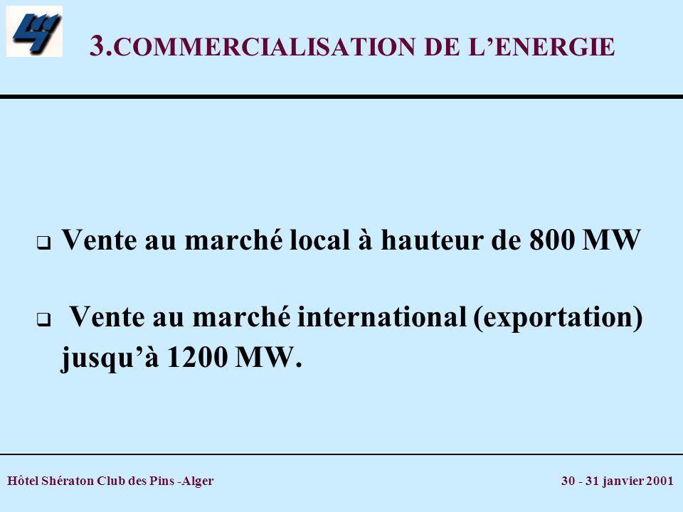 3.COMMERCIALISATION DE L'ENERGIE