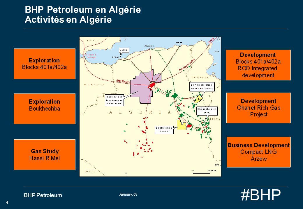 BHP Petroleum en Algérie Activités en Algérie