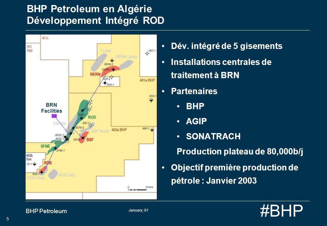 BHP Petroleum en Algérie Développement Intégré ROD