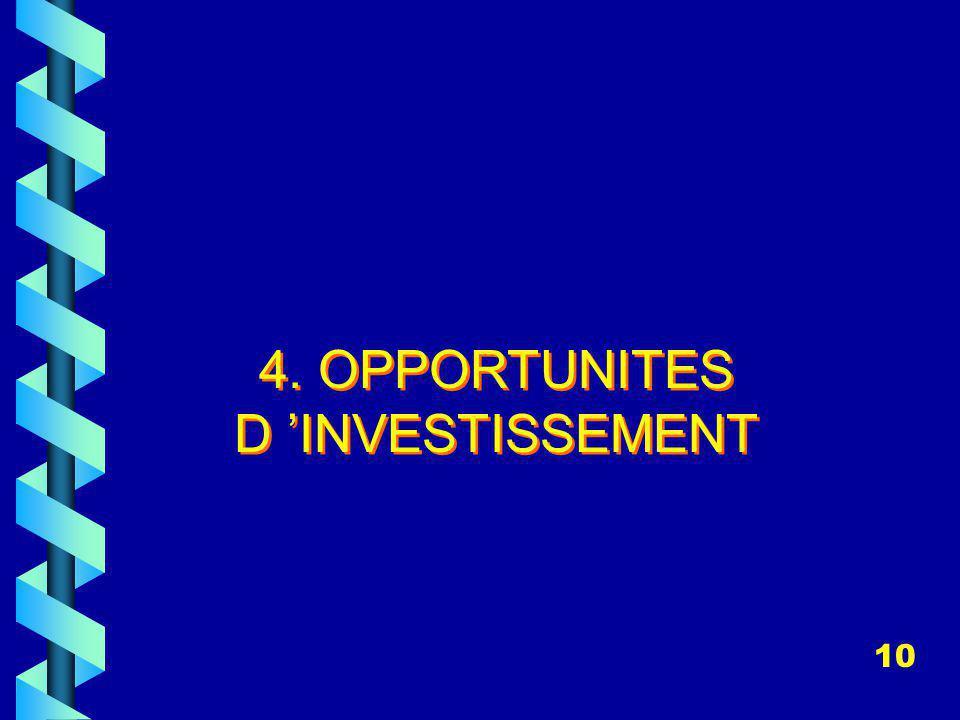 4. OPPORTUNITES D 'INVESTISSEMENT