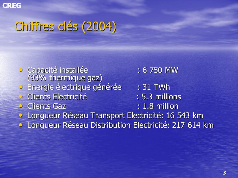 Chiffres clés (2004) Capacité installée : 6 750 MW (93% thermique gaz)