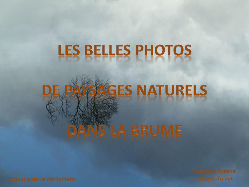 les belles photos De paysages naturels Dans la brume