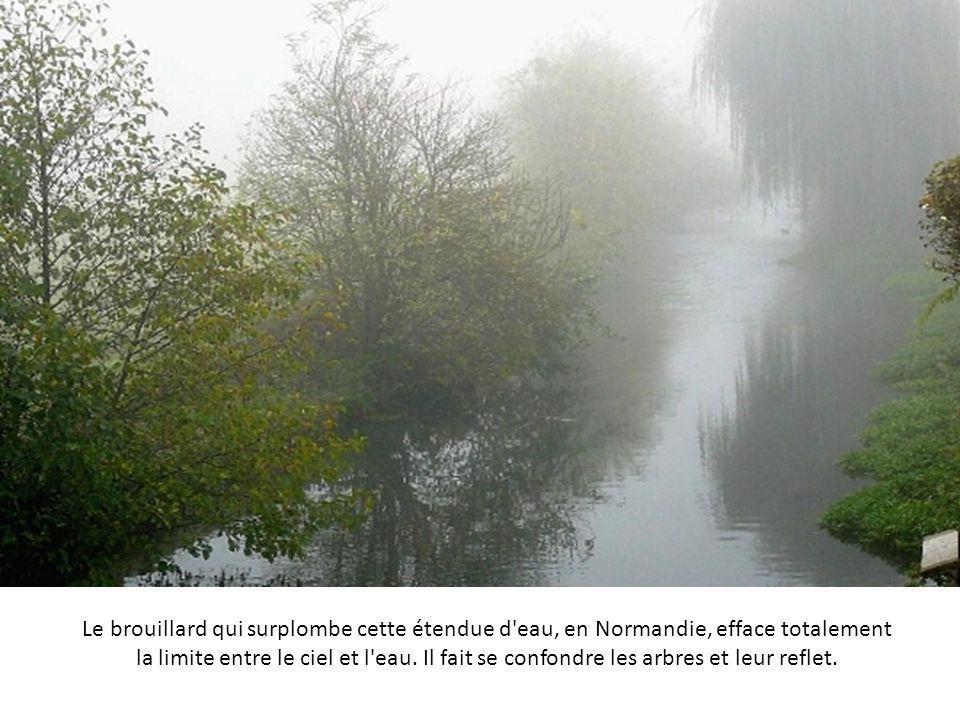 Le brouillard qui surplombe cette étendue d eau, en Normandie, efface totalement la limite entre le ciel et l eau.
