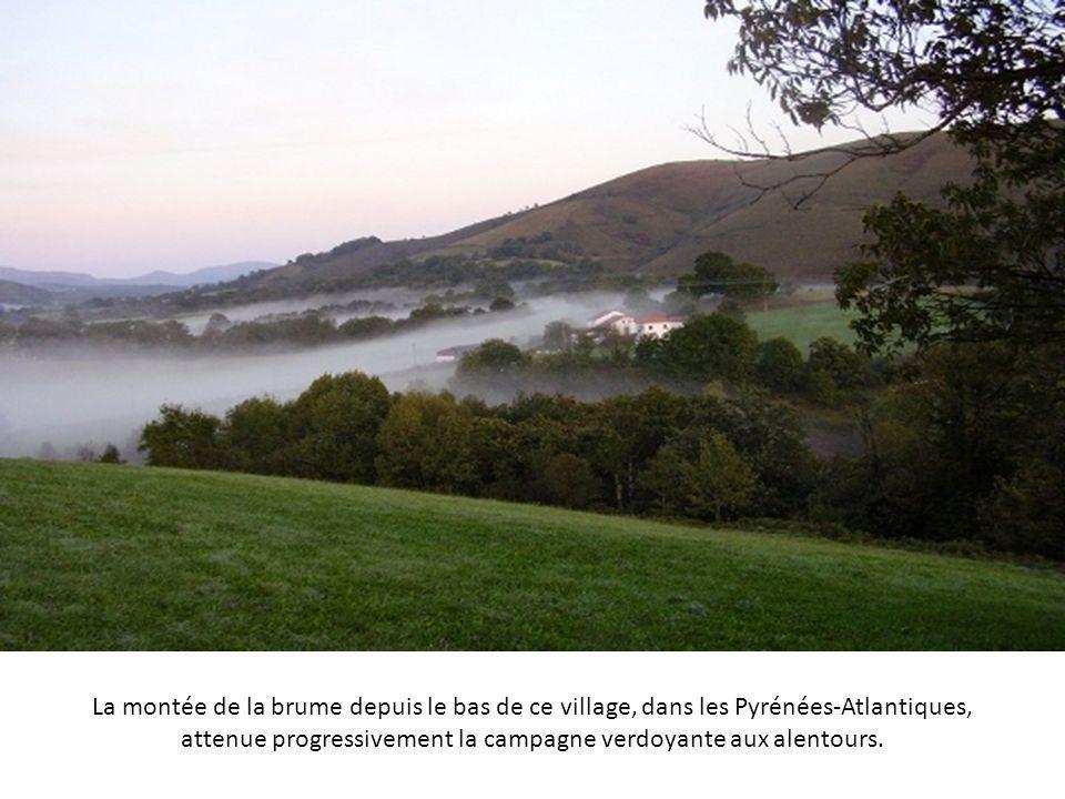 La montée de la brume depuis le bas de ce village, dans les Pyrénées-Atlantiques, attenue progressivement la campagne verdoyante aux alentours.