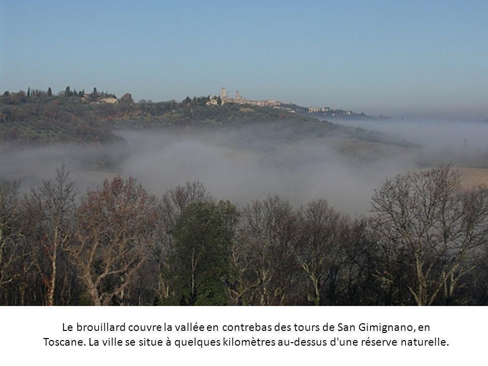 Le brouillard couvre la vallée en contrebas des tours de San Gimignano, en Toscane.
