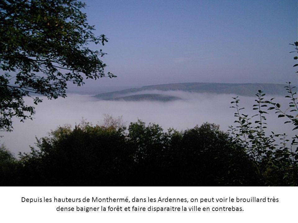 Depuis les hauteurs de Monthermé, dans les Ardennes, on peut voir le brouillard très dense baigner la forêt et faire disparaitre la ville en contrebas.