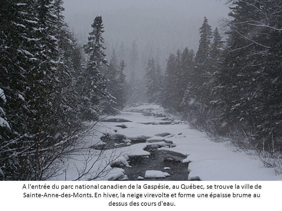 A l entrée du parc national canadien de la Gaspésie, au Québec, se trouve la ville de Sainte-Anne-des-Monts.