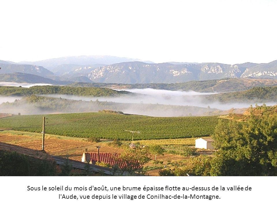 Sous le soleil du mois d août, une brume épaisse flotte au-dessus de la vallée de l Aude, vue depuis le village de Conilhac-de-la-Montagne.