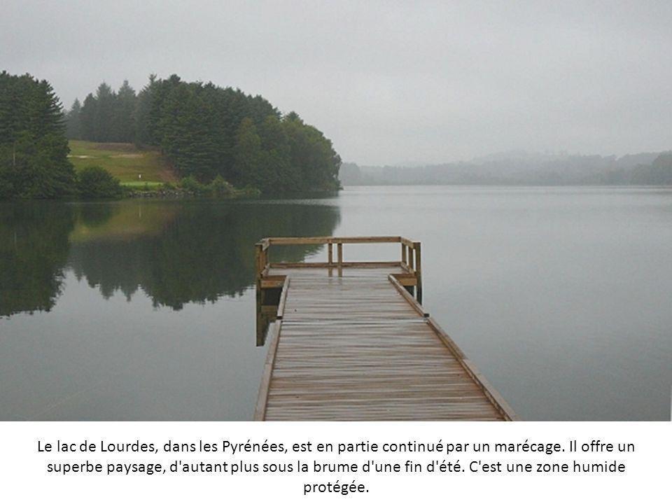 Le lac de Lourdes, dans les Pyrénées, est en partie continué par un marécage.