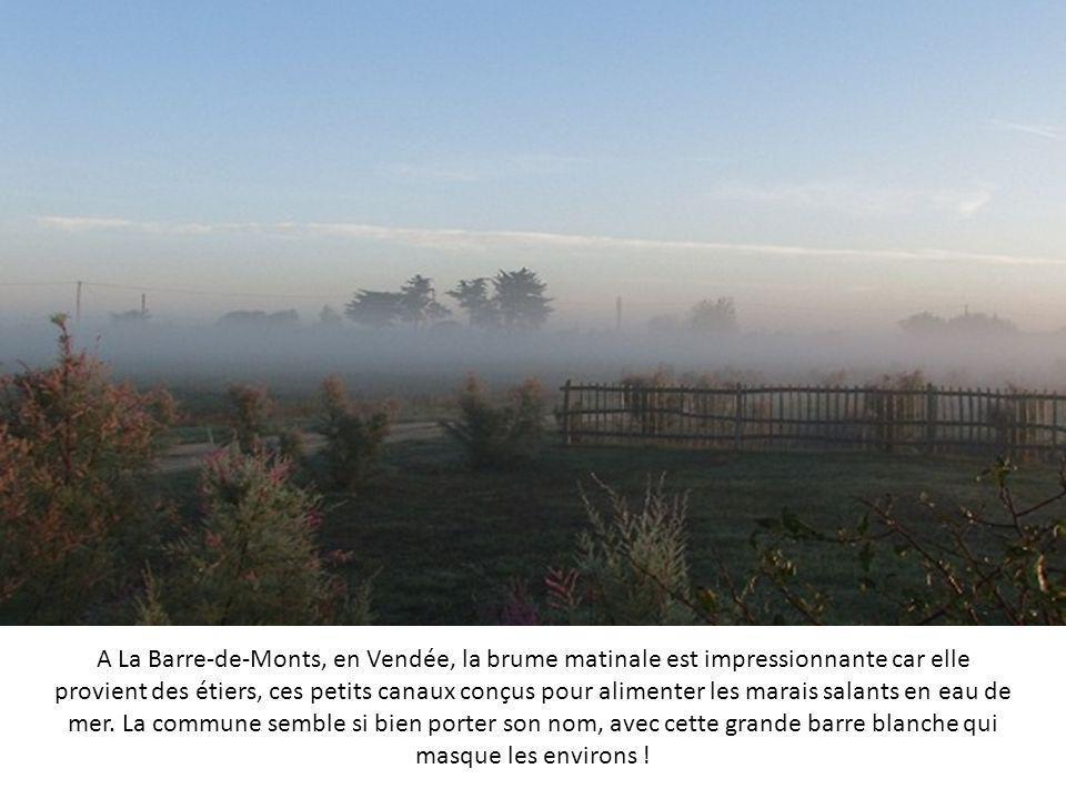 A La Barre-de-Monts, en Vendée, la brume matinale est impressionnante car elle provient des étiers, ces petits canaux conçus pour alimenter les marais salants en eau de mer.