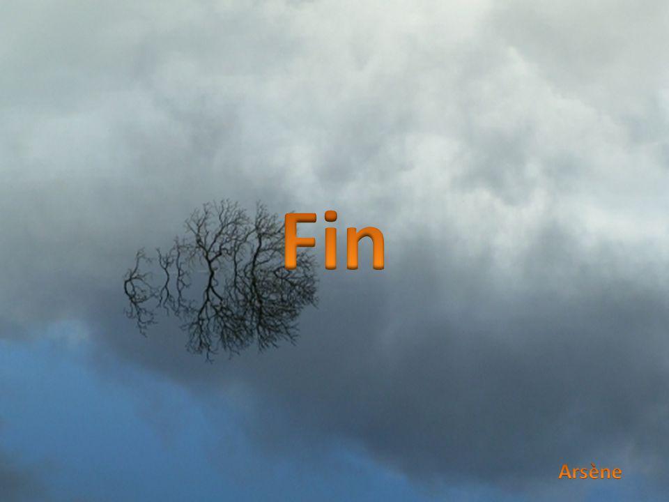 Fin Arsène