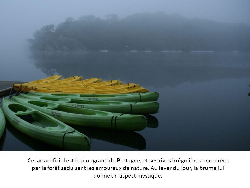 Ce lac artificiel est le plus grand de Bretagne, et ses rives irrégulières encadrées par la forêt séduisent les amoureux de nature.
