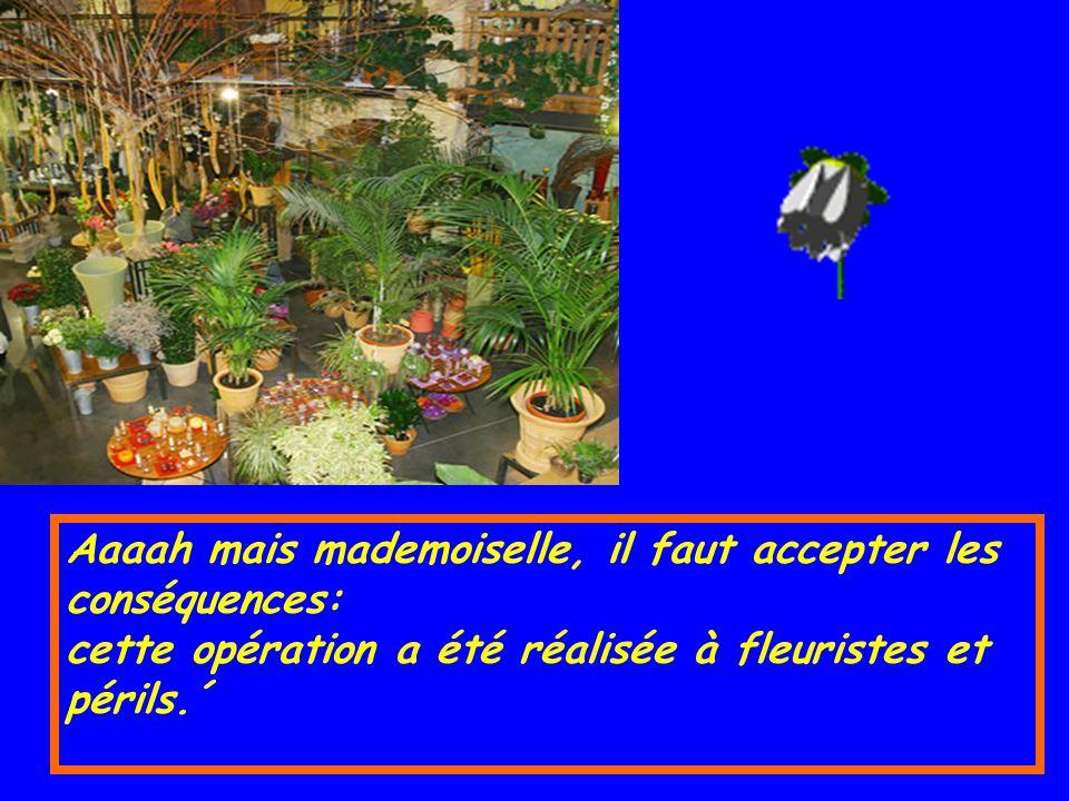 Aaaah mais mademoiselle, il faut accepter les conséquences: cette opération a été réalisée à fleuristes et périls.´