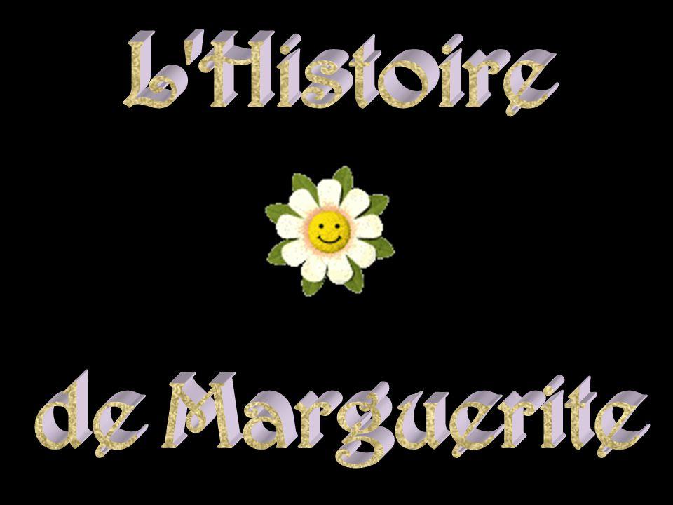 L Histoire de Marguerite