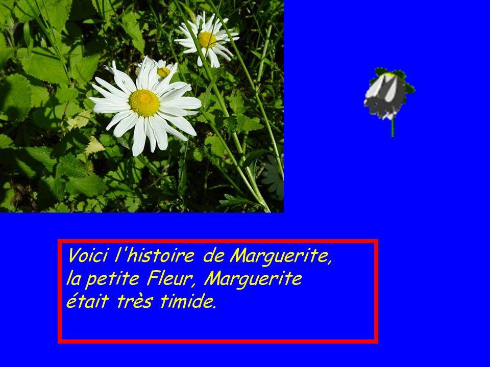 Voici l histoire de Marguerite, la petite Fleur, Marguerite