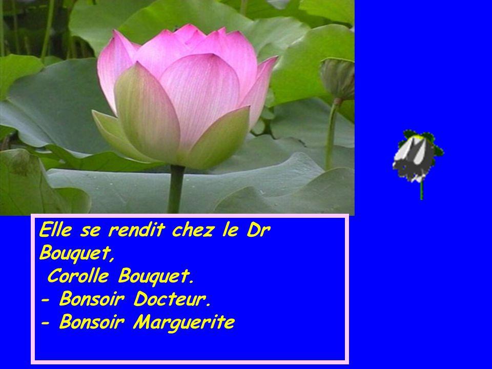 Elle se rendit chez le Dr Bouquet,