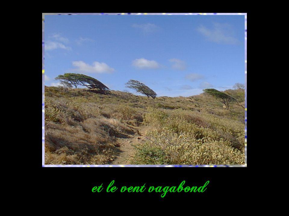 et le vent vagabond