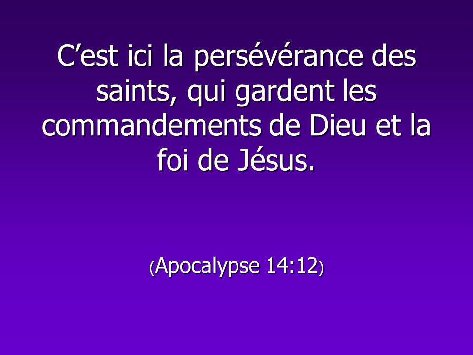 C'est ici la persévérance des saints, qui gardent les commandements de Dieu et la foi de Jésus.