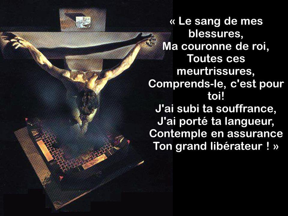 « Le sang de mes blessures, Ma couronne de roi, Toutes ces meurtrissures, Comprends-le, c est pour toi.