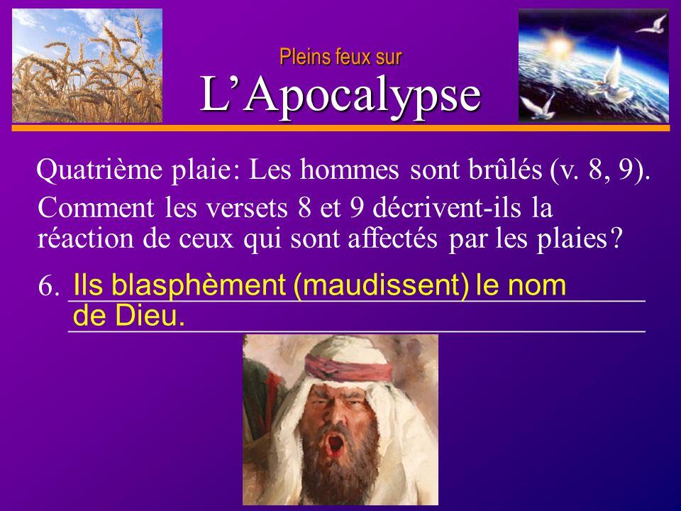 L'Apocalypse Quatrième plaie : Les hommes sont brûlés (v. 8, 9).