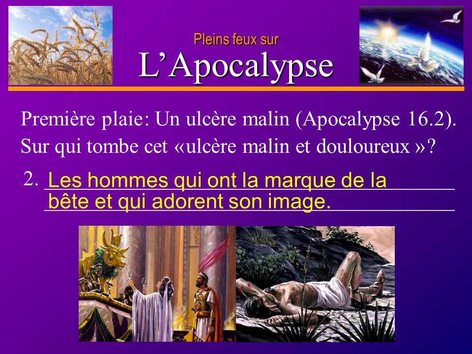 L'Apocalypse Première plaie : Un ulcère malin (Apocalypse 16.2).