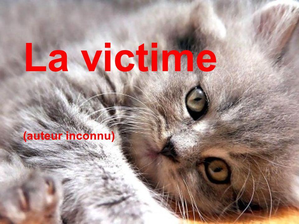 La victime (auteur inconnu)