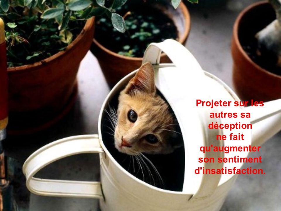 Projeter sur les autres sa déception ne fait qu augmenter son sentiment d insatisfaction.
