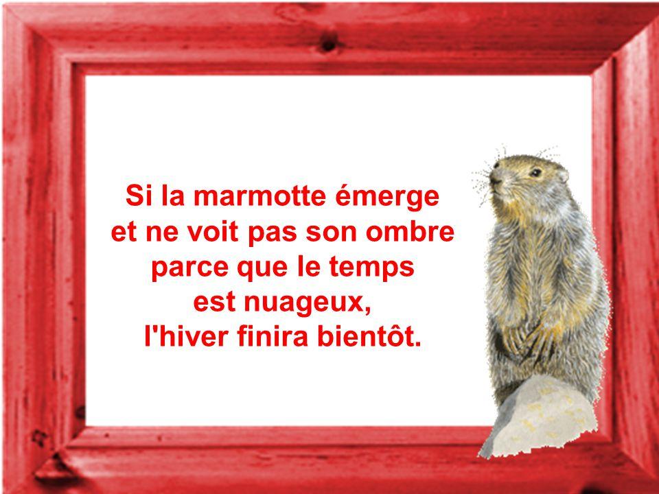 Si la marmotte émerge et ne voit pas son ombre parce que le temps est nuageux, l hiver finira bientôt.
