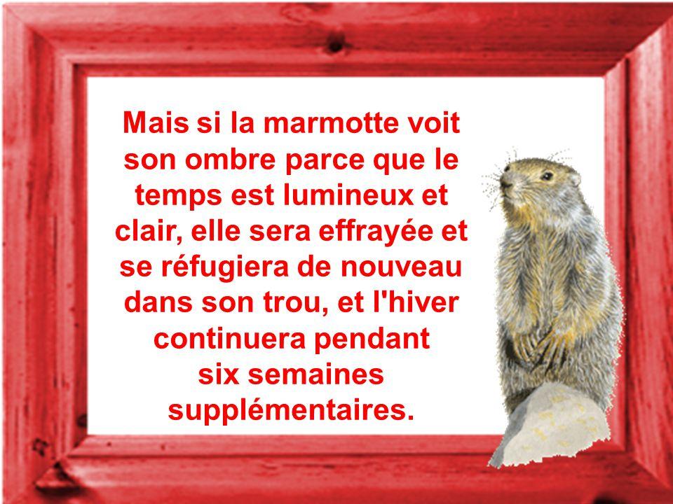 Mais si la marmotte voit son ombre parce que le temps est lumineux et clair, elle sera effrayée et se réfugiera de nouveau dans son trou, et l hiver continuera pendant six semaines supplémentaires.