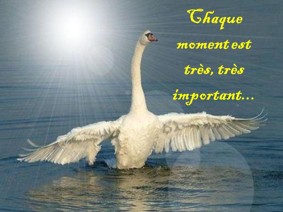 Chaque moment est très, très important...