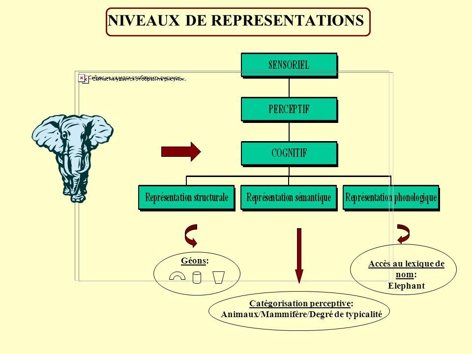NIVEAUX DE REPRESENTATIONS