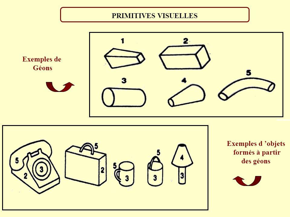 PRIMITIVES VISUELLES Exemples de Géons Exemples d 'objets formés à partir des géons