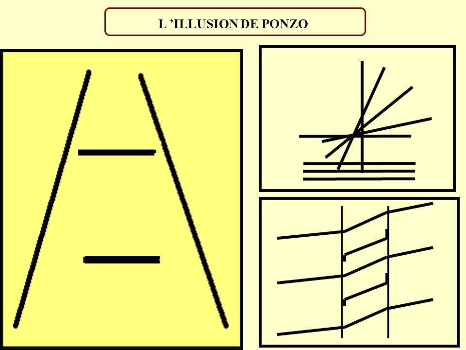 L 'ILLUSION DE PONZO