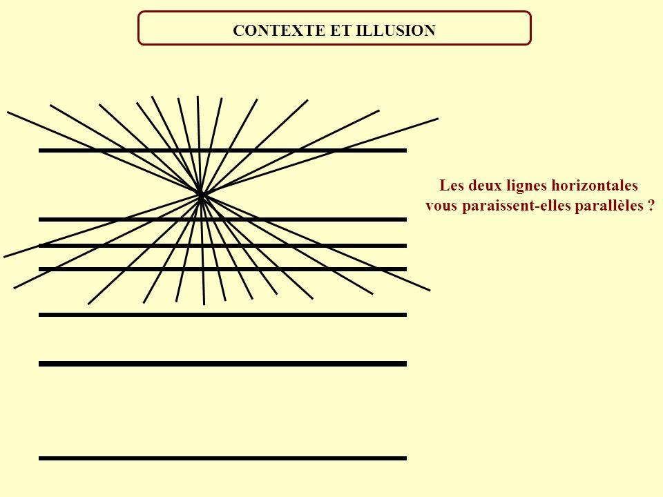 Les deux lignes horizontales vous paraissent-elles parallèles