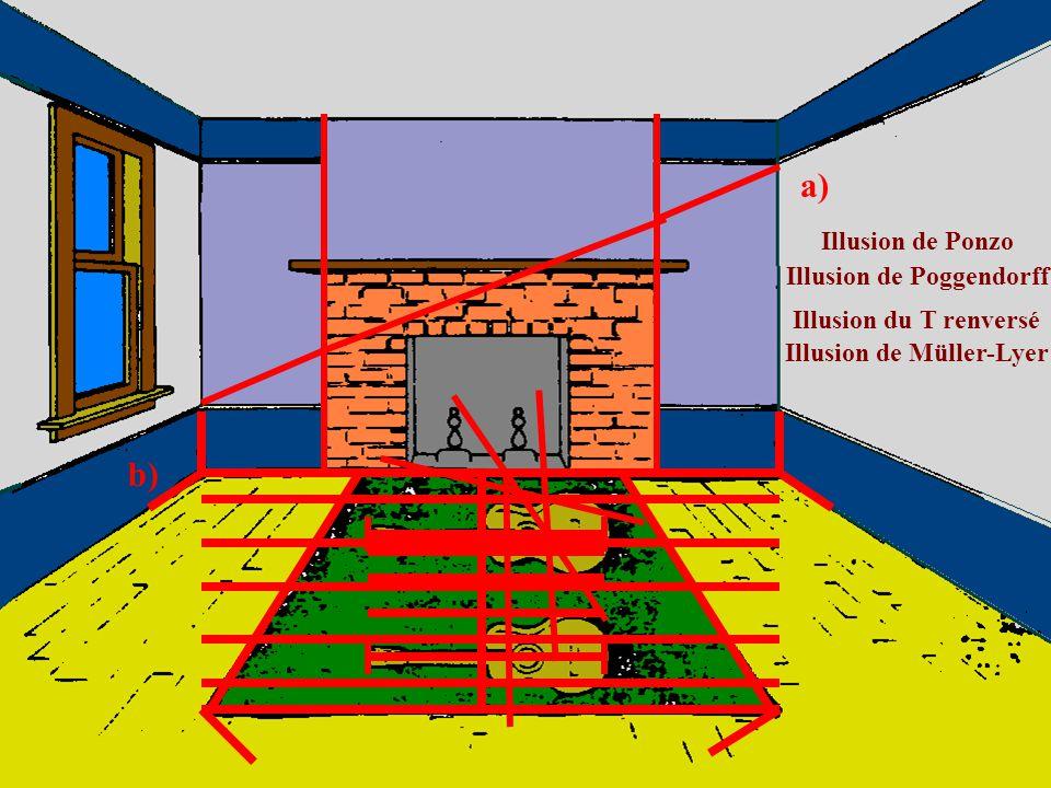 Illusion de Poggendorff Illusion de Müller-Lyer