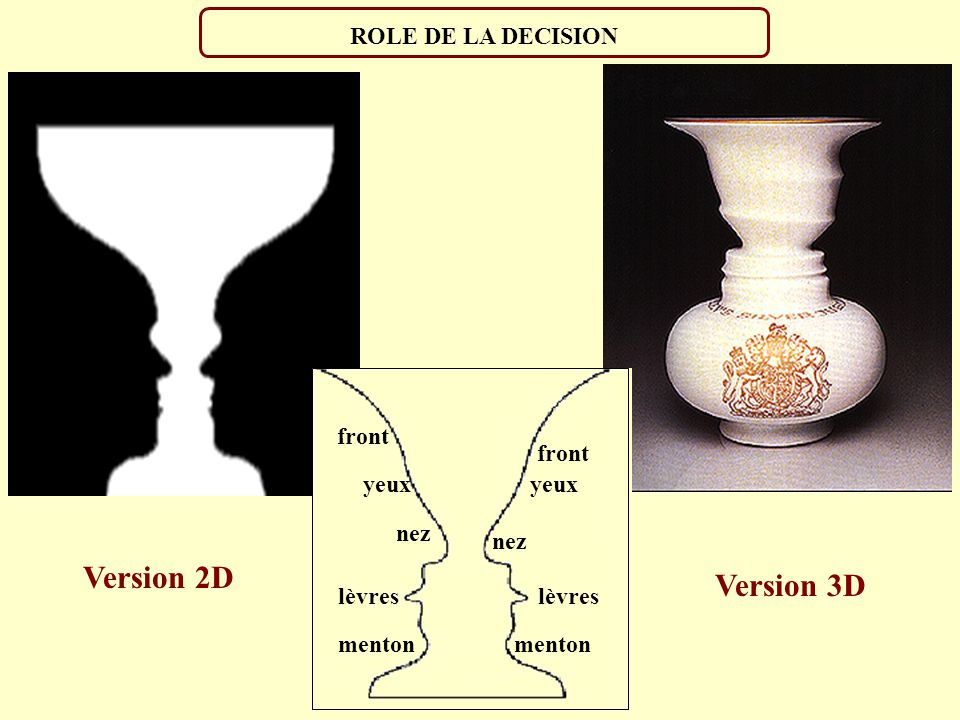 ROLE DE LA DECISION lèvres front yeux menton nez Version 2D Version 3D