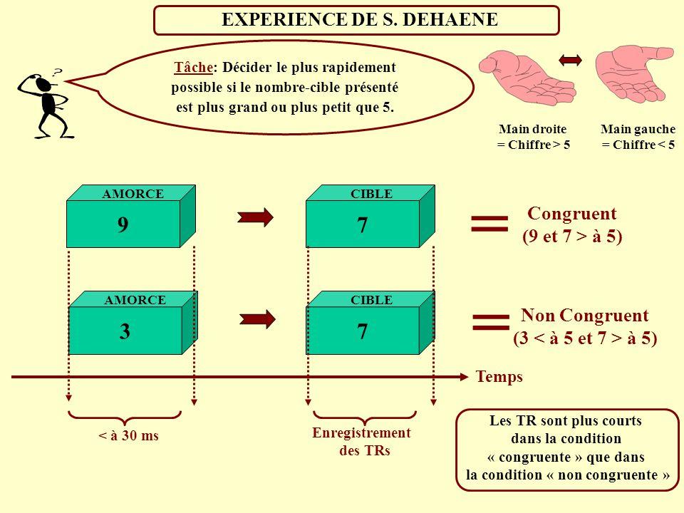 EXPERIENCE DE S. DEHAENE