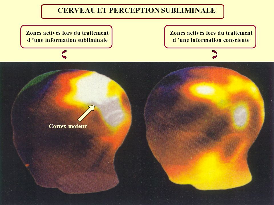 CERVEAU ET PERCEPTION SUBLIMINALE