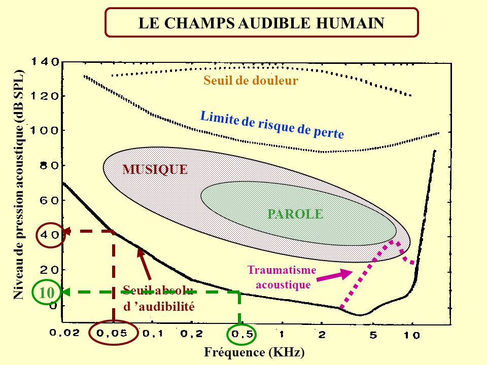 LE CHAMPS AUDIBLE HUMAIN 10