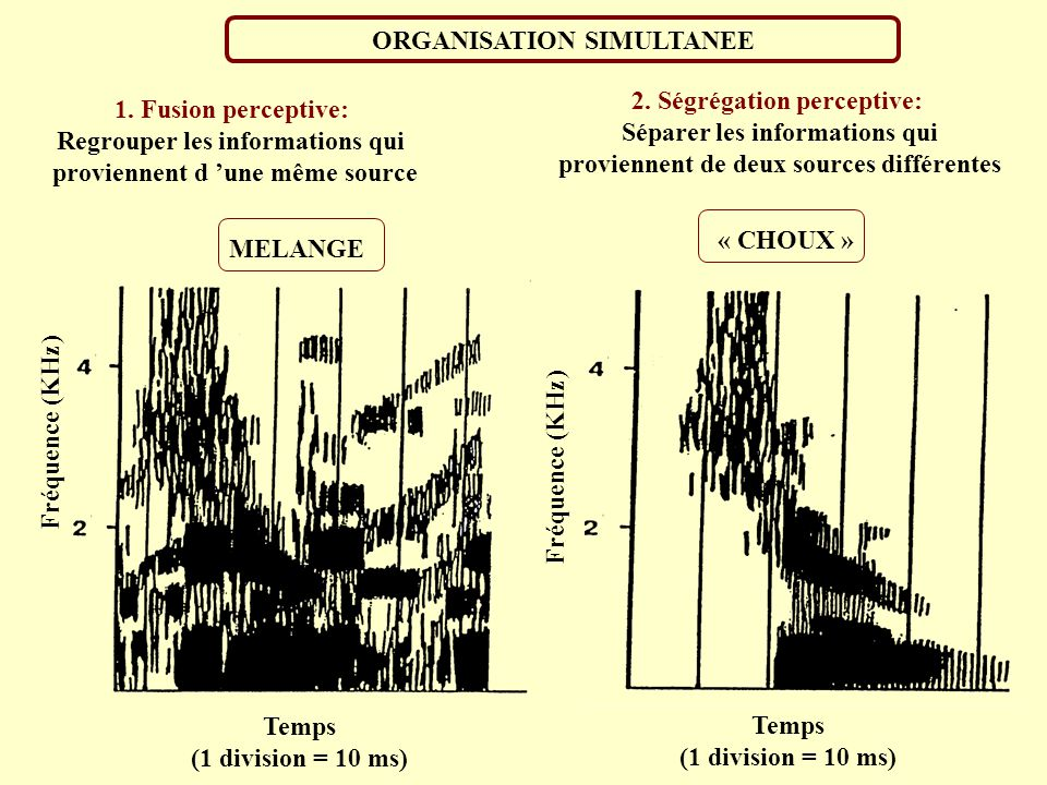 ORGANISATION SIMULTANEE