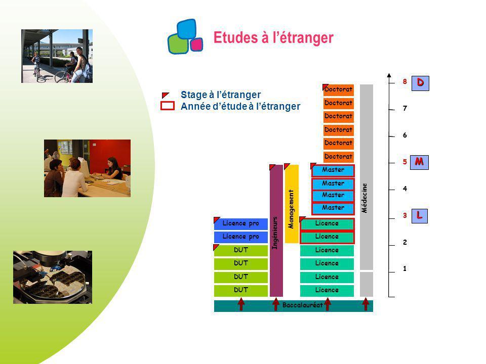 Etudes à l'étranger D Stage à l'étranger Année d'étude à l'étranger M