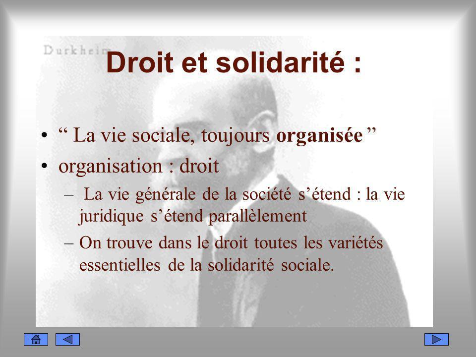 Droit et solidarité : La vie sociale, toujours organisée