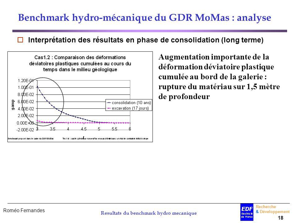 Benchmark hydro-mécanique du GDR MoMas : analyse