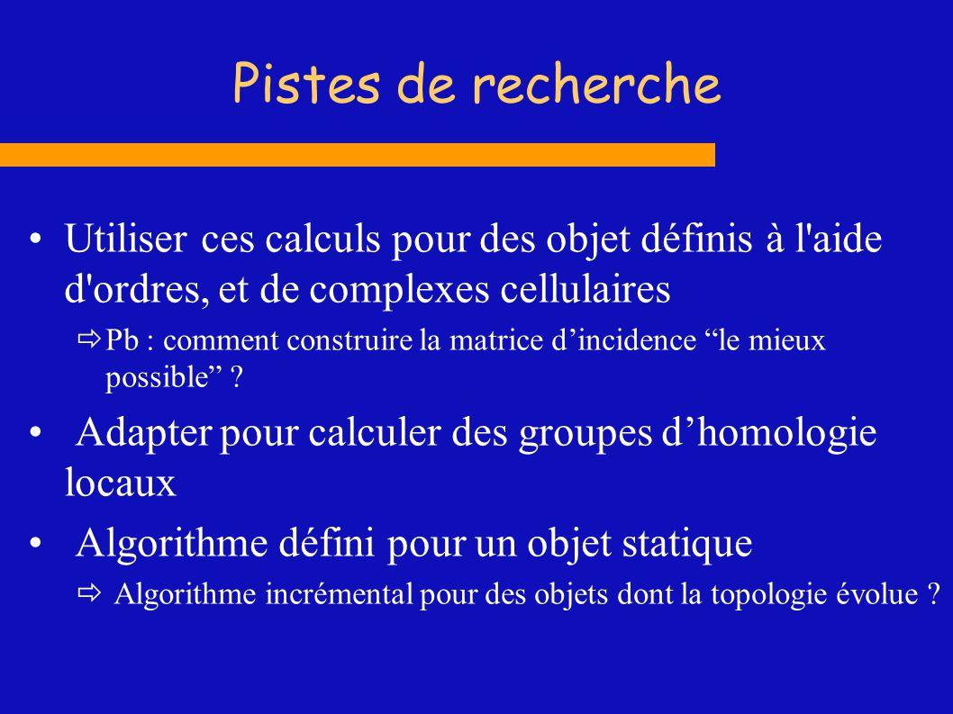 Pistes de recherche Utiliser ces calculs pour des objet définis à l aide d ordres, et de complexes cellulaires.