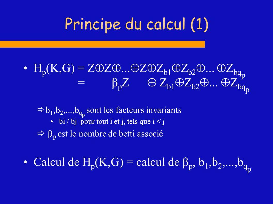 Principe du calcul (1) Hp(K,G) = ...Zb1Zb2... Zbqp = βp  Zb1Zb2... Zbqp.