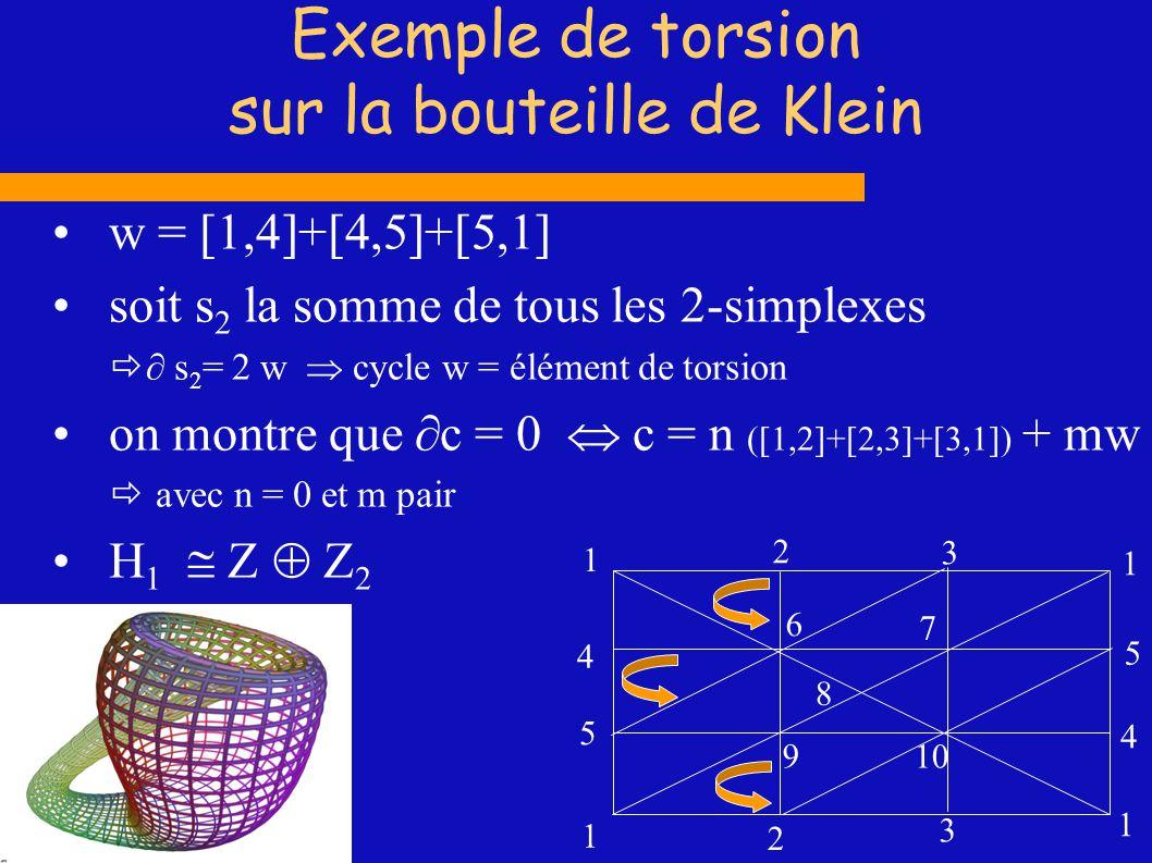 Exemple de torsion sur la bouteille de Klein