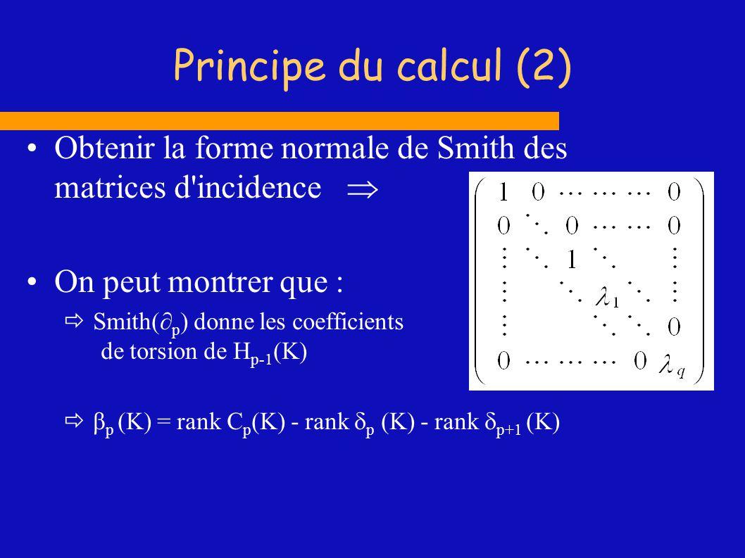 Principe du calcul (2) Obtenir la forme normale de Smith des matrices d incidence  On peut montrer que :