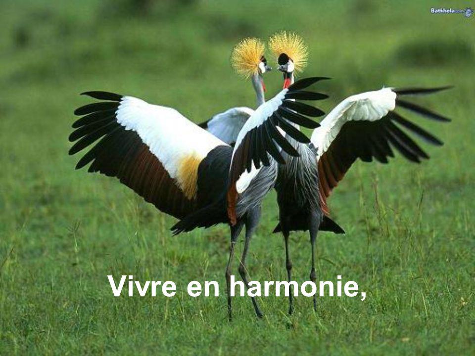 Vivre en harmonie,