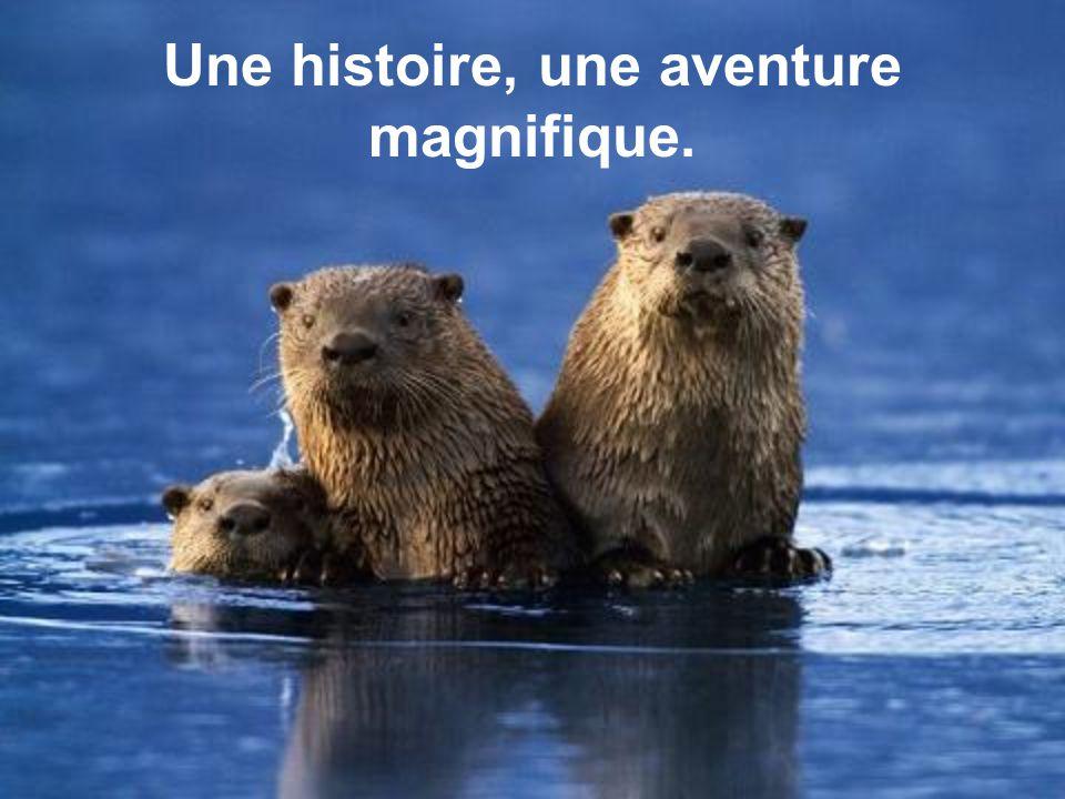 Une histoire, une aventure magnifique.