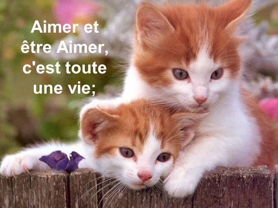 Aimer et être Aimer, c est toute une vie;
